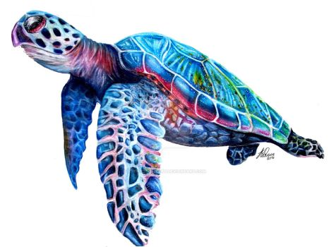 Sea Turtle by sophiebrownart