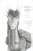 The CumberSmaug by darkwolfhowling