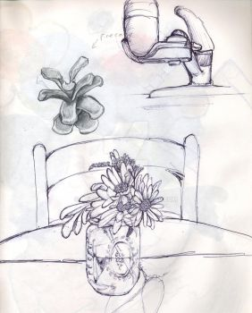 flower and sink sketch by lylah-rose