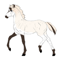 N3646 Padro Foal Design by casinuba