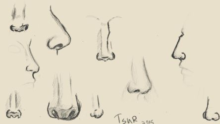 Noses by TsuRIL