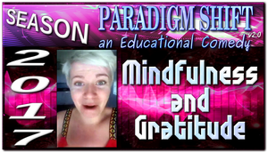 PSEC 2017 Mindfulness and Gratitude by paradigm-shifting