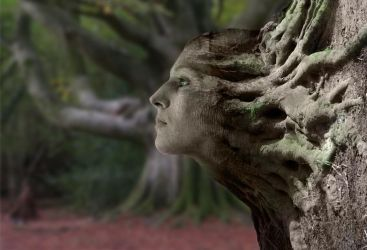 Dryad by wilddoug
