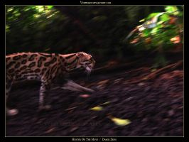 Hunter On The Move by Vorheart