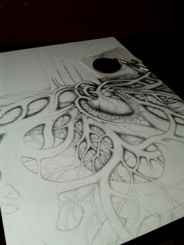 in progress by SteAus