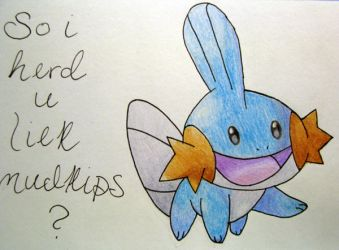so i herd u liek mudkips by dimmub