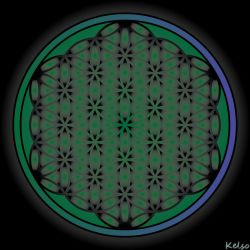 Flower of life by blood-stained-eyes