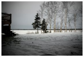 Frozen Lake III by elgrizzly