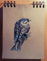 Daily sketch 4 - The Goldcrest by Crateris