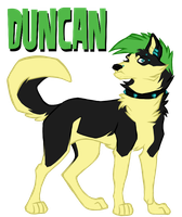 Total Drama: Duncan by iRaynebow