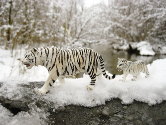 Schleich White Tiger and Cub by ShadoweonCollections