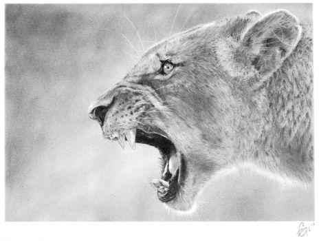 'Roar' by CarlSyres