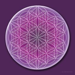 The Flower of Life by MarvickSands