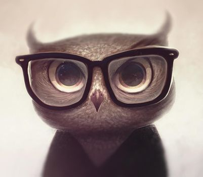 Nerdy Owl by vincenthachen