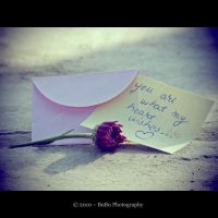 .:What my heart wishes:. by bogdanici