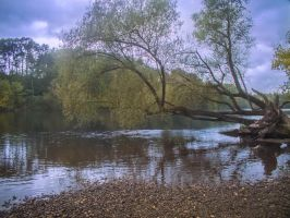 Autumn 2014 - The river 04 by HermitCrabStock
