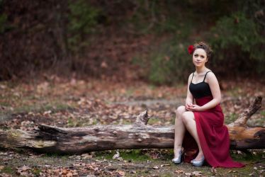 Elegant by CloudyDayPhotography