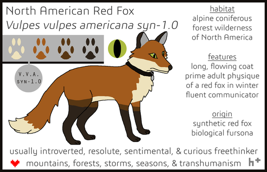 Fox Fursona Reference 2017-2018 by foxstory