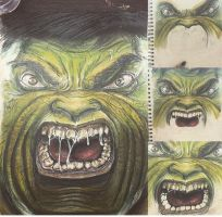 The Incredible Hulk by thecolourpeople