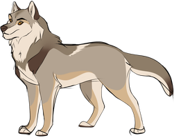 Wolf Boy for sale x3 pictures Closed by oCrystal