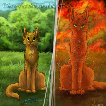 The Fire that saved the Clans by Finchwing