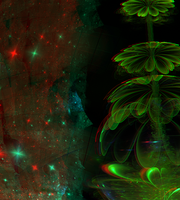 Flower of Space  Anaglyph 3D Stereoscopy by Osipenkov