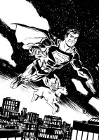 Superman and Krypto by deankotz