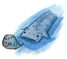NOT A WHALE by sedge
