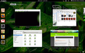 Gnome 3 in Linux Mint-3 by malvescardoso