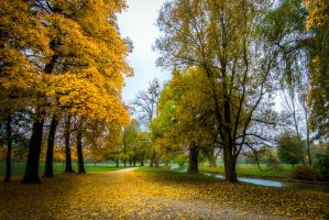 Munich, walk in Englischer Garten by alierturk