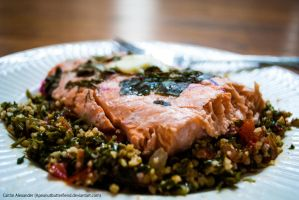 Lemon Baked Salmon by Apeanutbutterfiend