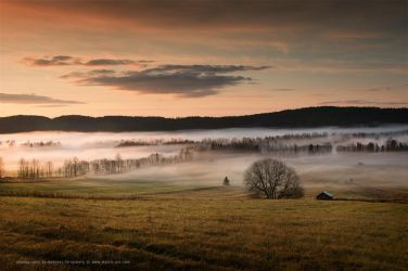 Home Sweet Home by Stridsberg