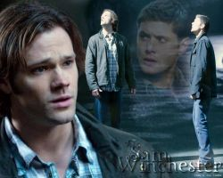 Carry on my wayward son by dirtypicture