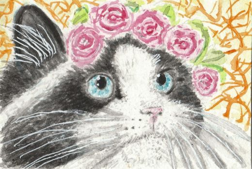 Pretty Kitty  cat watercolor aceo painting by tulipteardrops
