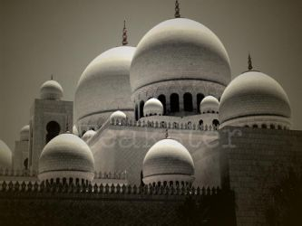 Shaykh Zayd Mosque - Domes by Teakster
