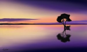 Reflection by ALS123
