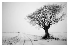 After The Snow, Outside I by krush