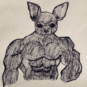 Muscular Chihuahua  by MegaManofHonor