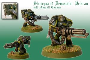 Sternguard Devastator Veteran with Assault Cannon by Pip-Faz