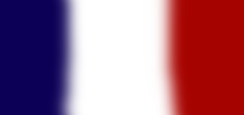 French Flag by DuchessUru