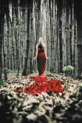 the red queen by grabraeuber68