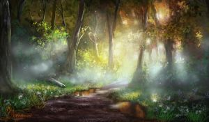 Early Morning Forest Path by jjpeabody