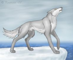 Howling with the wind by Kuuda