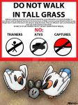 PKMN-ORAS Hype--Please Don't Step on the Wingull by Kineil-Wicks
