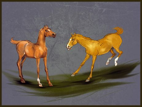 FOAL WITH BLOODLINES -- SOLD by Araxel