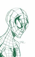 Daily Sketch: Spider-Man by Hunchy