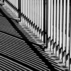 light and shadow by augenweide