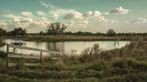 Pasture and Pond by johnbpeele