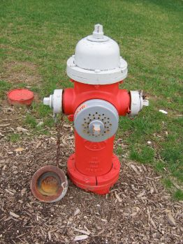 Fire Hydrant by TheStockWarehouse