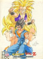Dragon Ball Z - Hyper Dimesion by odairjr